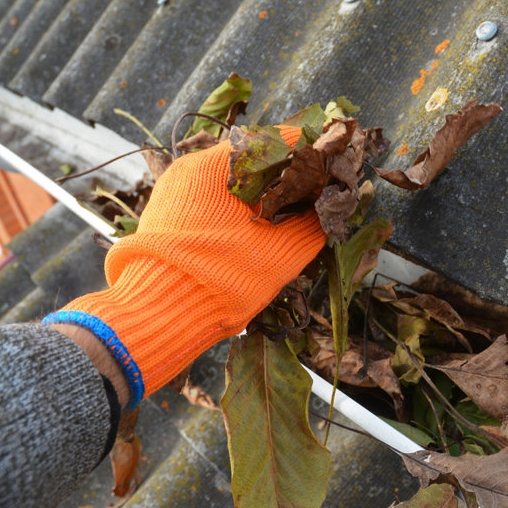 gutter system with leaves